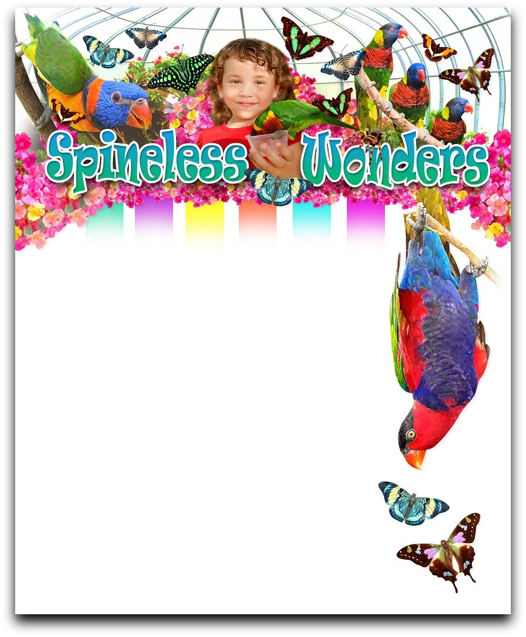 Spineless Wonders